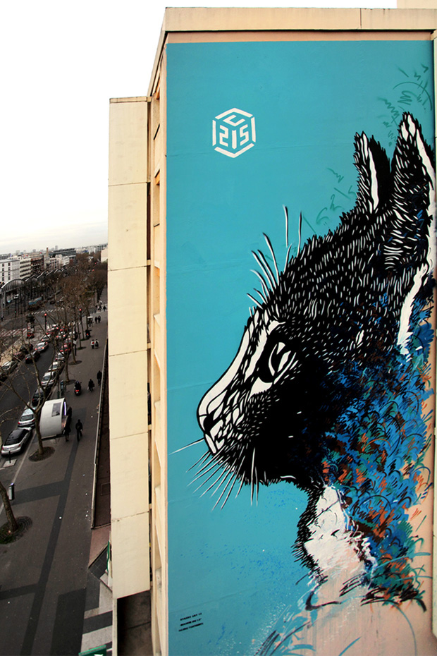 c215-blvd-vincent-auriol-paris-march-2013-photo-copyright-theo-david-2